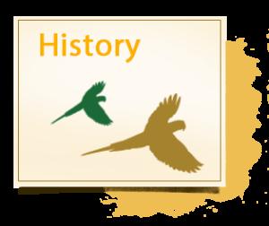 historia-inlges